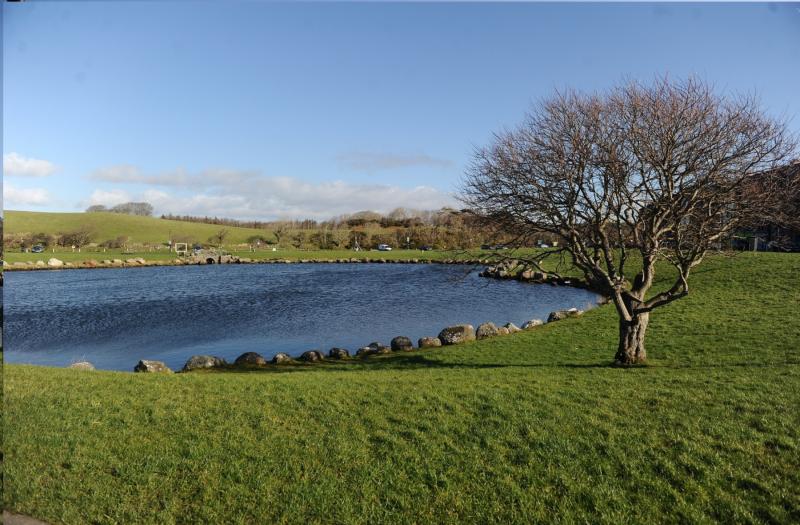 7-Pond.-Photo-C.-McKeown-e1614765352396